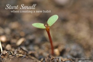 Start Small with New Habits