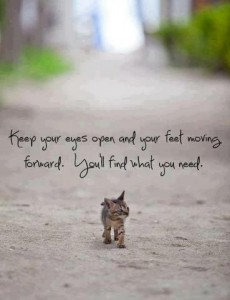 keep-moving-forward-kitten