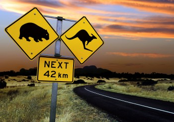 bigstockphoto_Australian_Road_Sign_19483611