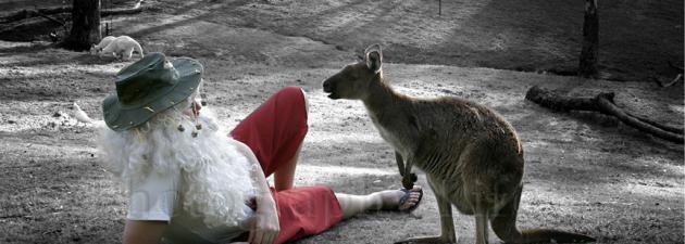 オーストラリア ライフスタイル&ビジネス研究所:クリスマス IN オーストラリア ②