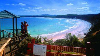 Bibbulum-Track-106344