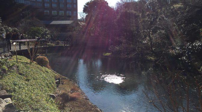 都会のオアシスを求めて:椿山荘の庭園