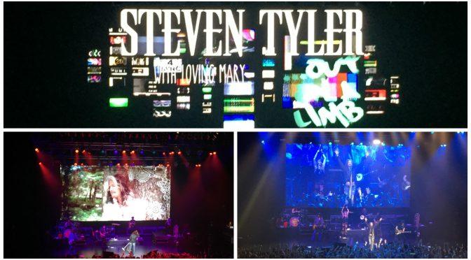 Steven Tyler JAPAN TOUR 2017 大阪公演に行って、Stevenの優しさとロックの伝説の凄みを体感してきた