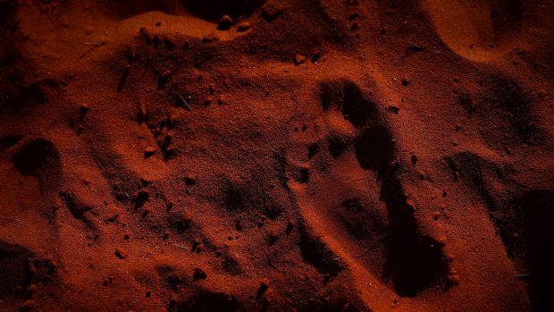 オーストラリア ライフスタイル&ビジネス研究所:アボリジニ 65,000年以上前にオーストラリア大陸に到達 ②