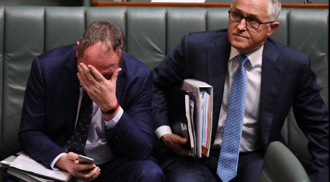 オーストラリア ライフスタイル&ビジネス研究所:ジョイス副首相 二重国籍により議員資格喪失