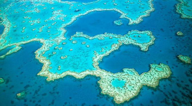 オーストラリア ライフスタイル & ビジネス研究所:いくつ知ってる?地球にまつわる興味深い雑学(グレートバリアリーフ)