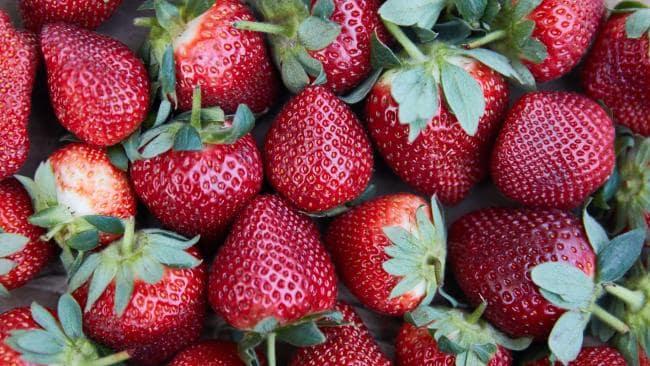 オーストラリア ライフスタイル & ビジネス研究所:イチゴに針混入騒動、容疑者は農園元管理人