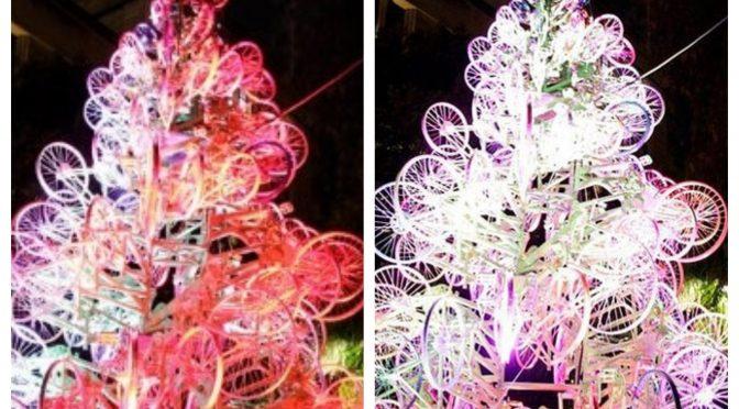 オーストラリア ライフスタイル & ビジネス研究所:世界の「変わり種クリスマス・ツリー」30本(the bicycle tree, Sydney)