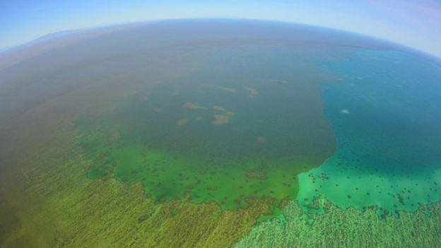 オーストラリア ライフスタイル & ビジネス研究所:洪水でグレートバリアリーフに被害、サンゴ「窒息死」の恐れ