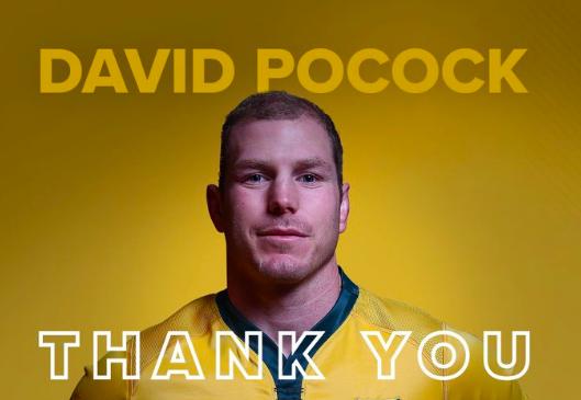 オーストラリア ライフスタイル&ビジネス研究所:デイヴィッド・ポーコック選手、ラグビーワールドカップ2019後に現役引退