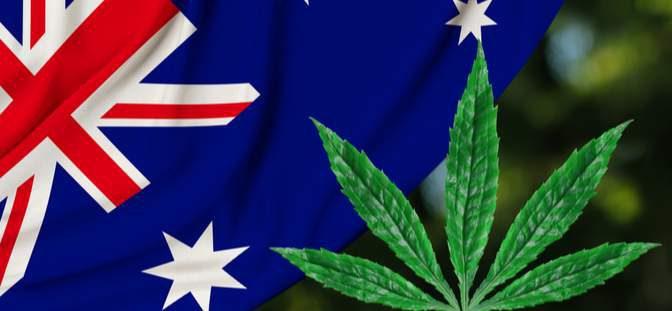 オーストラリア ライフスタイル & ビジネス研究所:キャンベラで2020年1月から大麻使用合法化