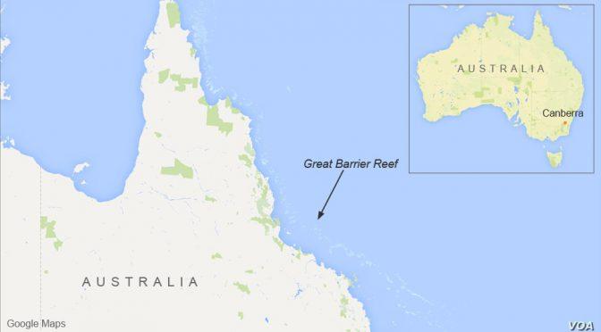 オーストラリア ライフスタイル&ビジネス研究所:グレートバリアリーフでサンゴ礁の生息、20年間で半減
