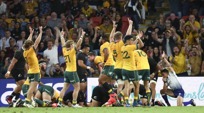 オーストラリア ライフスタイル&ビジネス研究所:ワラビーズ、2020ブレディスローカップ 一矢報いる(1勝2敗1分)
