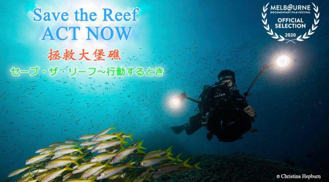 オーストラリア ライフスタイル&ビジネス研究所:自然ドキュメンタリー映画『セーブ・ザ・リーフ』東京ドキュメンタリー映画祭2020短編部門で上映